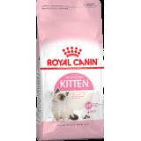 Kitten 10 кг
