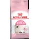 Kitten 400 гр